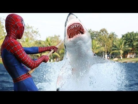 سبايدرمان يصطاد سمكه القرش العملاقة وخوف إلسا ملكة الثلج سبايدرمان كر Youtube Enjoyment