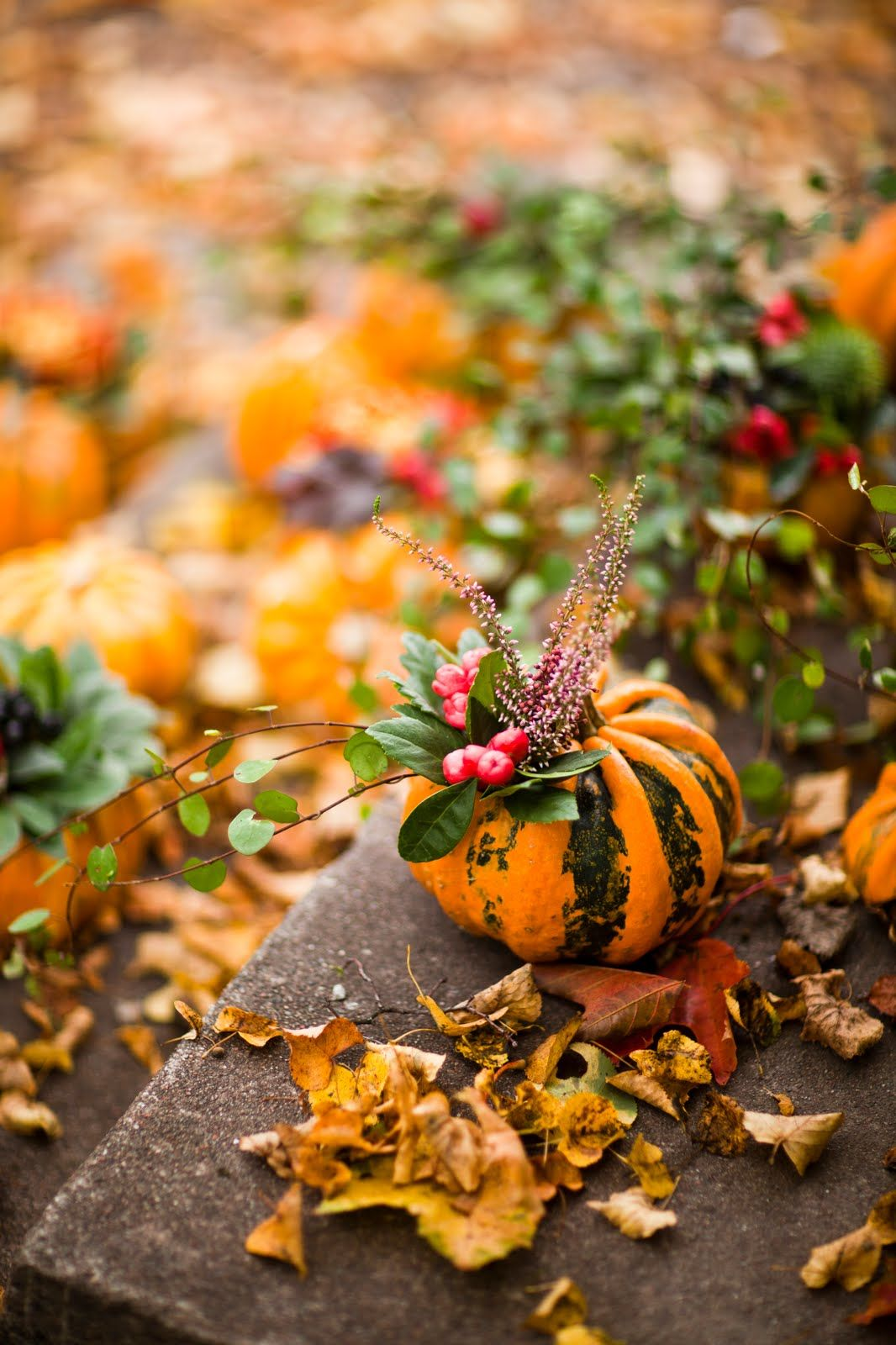 using smallish pumpkins or colorful squash decored with some festive berries and/or branches.   pretty!  ~cam