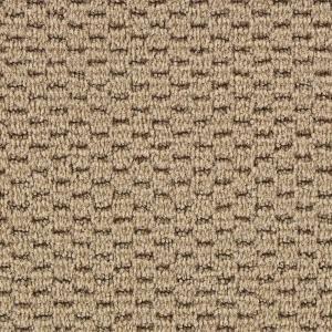 Martha Stewart Living Sandringham - Color Lentil 12 ft. Carpet-905HDMS096 at The Home Depot