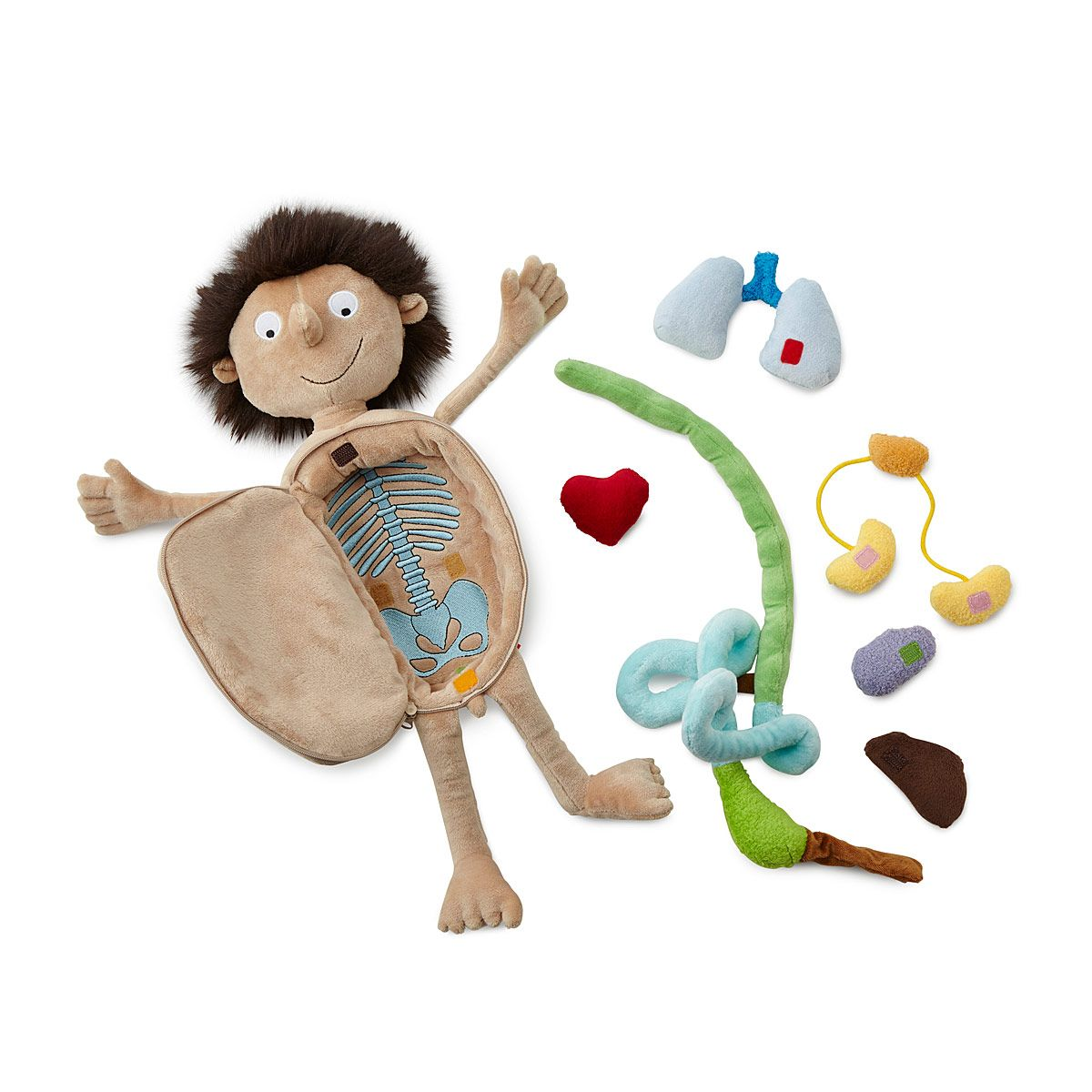 Little Patient | Doctor Doll, STEM, Anatomical Toys | Toys ...