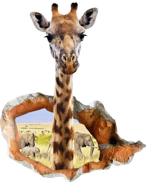 3d decal funny wall sticker with curious giraffe, vinyl wall sticker