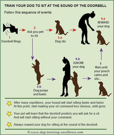 Learn A Barking Dog Solution For Hounds Barking At The Doorbell