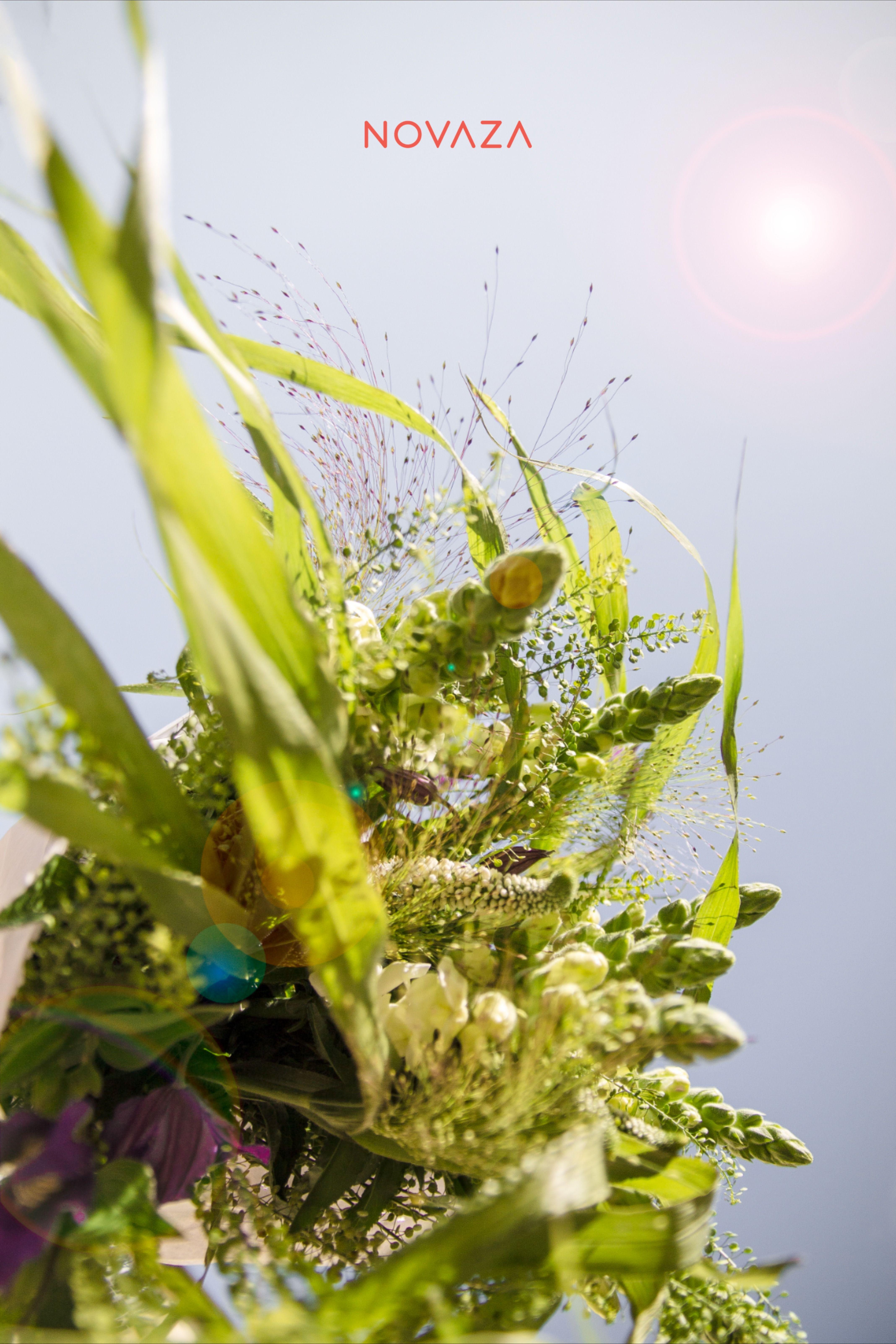 Jak nápaditě vyzdobit váš home office? Jednoduše nádhernými květinami 💐 z #Papavera - květinářství a betonovou vázou 🏺 #Novaza. P.S. První květina je ZDARMA. Právě teď na www.novaza.cz #novaza #home_accessories #home_accents #room_decor #home_floral_arrangements #gift_for_women #best_birthday_present #vase_with_flower_subscription #flower_delivery_as_gift #bezkvetinjisrdcenetluce #kvetinovepredplatne #vaza #homedecor #kvetiny #darekprozenu #tipnadarek #ceskydesign