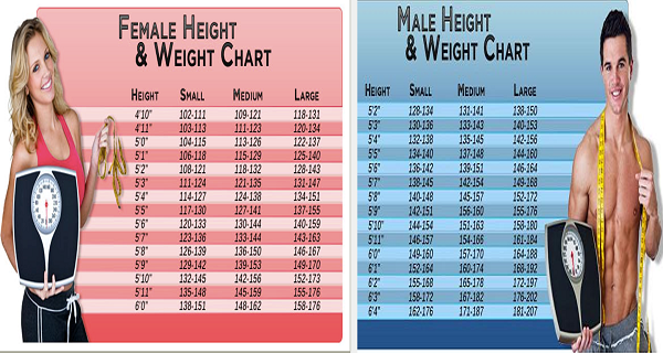 Chart This Is What You Should Weight According To Age Body Shape