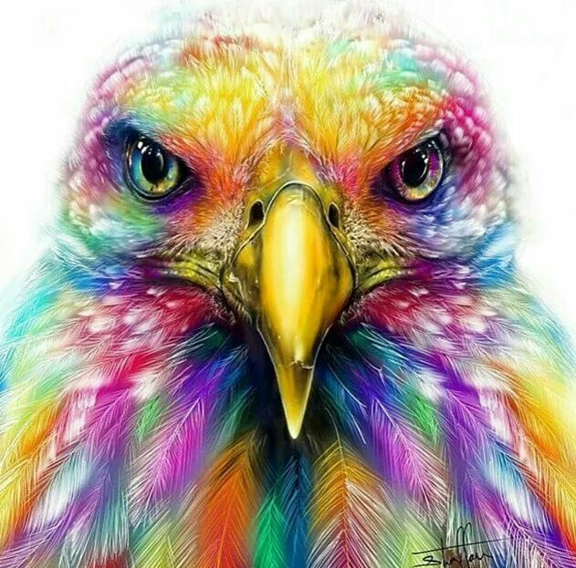 Eagle drawings in color