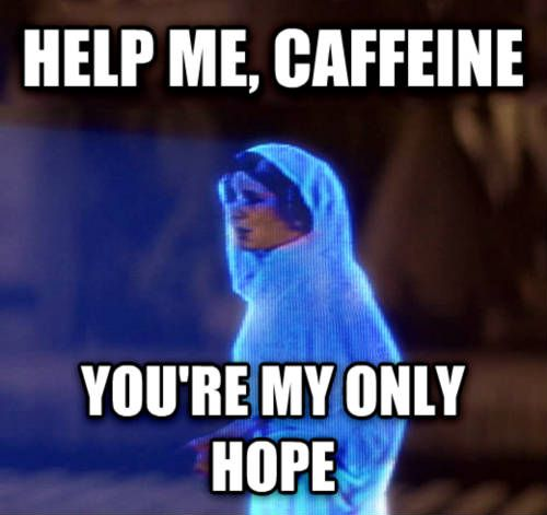 Star Wars Meme Your Re Welcome Google Suche Coffee Humor Morning Humor Humor
