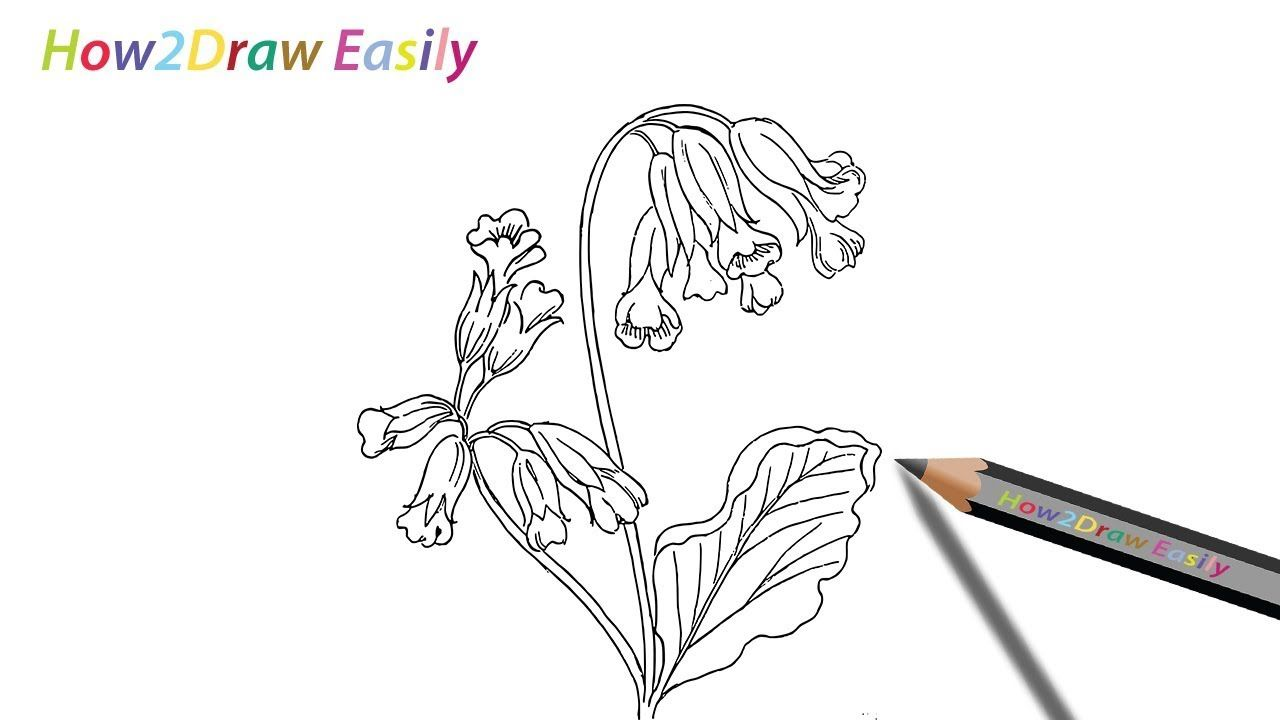 Pictures To Draw Easily