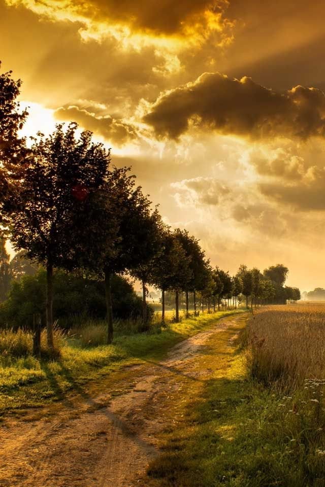 Stunning Nature And Landscape Photos Dirt Road Country Road Clouds Trees Beautiful Photograph Photo Autumn Landscape Beautiful Nature Landscape