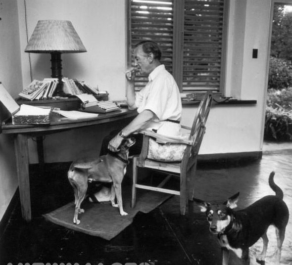 In Service Of Her Majesty Writer Ian Fleming And His Dogs Preparing A New 007 Novel Ian Fleming James Bond James Bond Movies