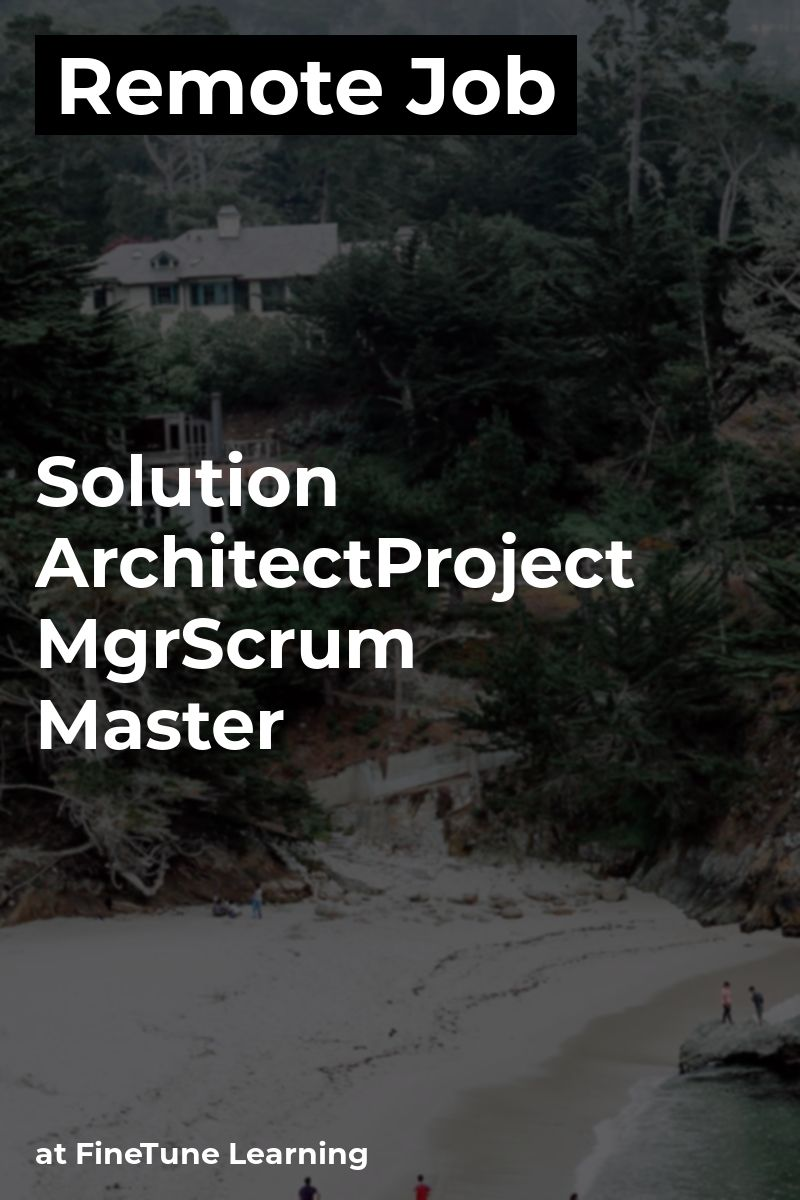 Remote Solution Architect/Project Mgr/Scrum Master at