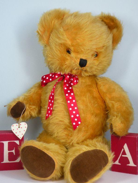 sale teddy Rare for chubby hoddie