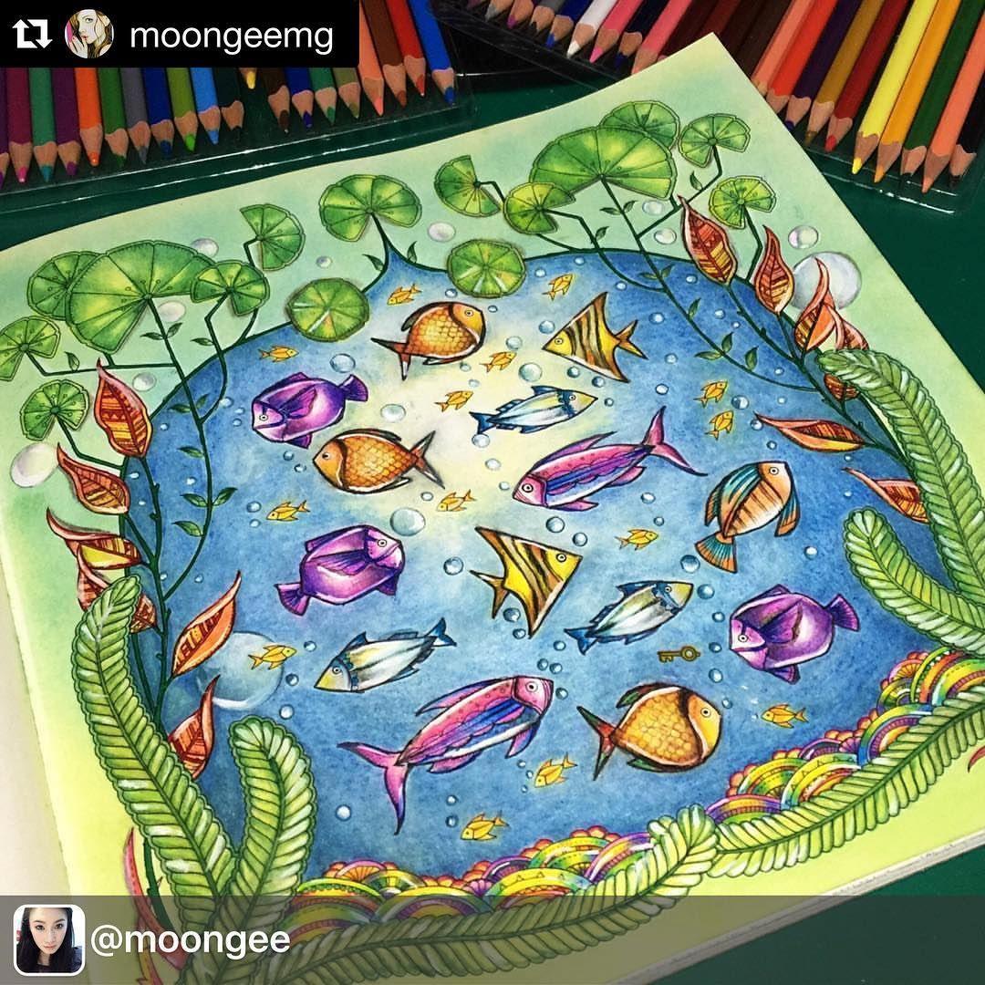 Inspiração linda de peixinhos Colorida por @moongee | Lost ocean ...