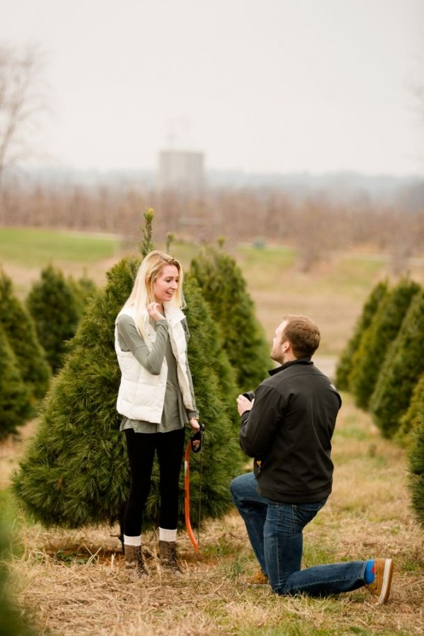 Kent And Haylee St Louis Wedding Photography Jessica Lauren Photography Tree Farm Proposal Wedding Photography Photography