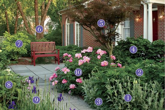 Front Yard Shrubs Plants For An Inviting Front Yard Pathway
