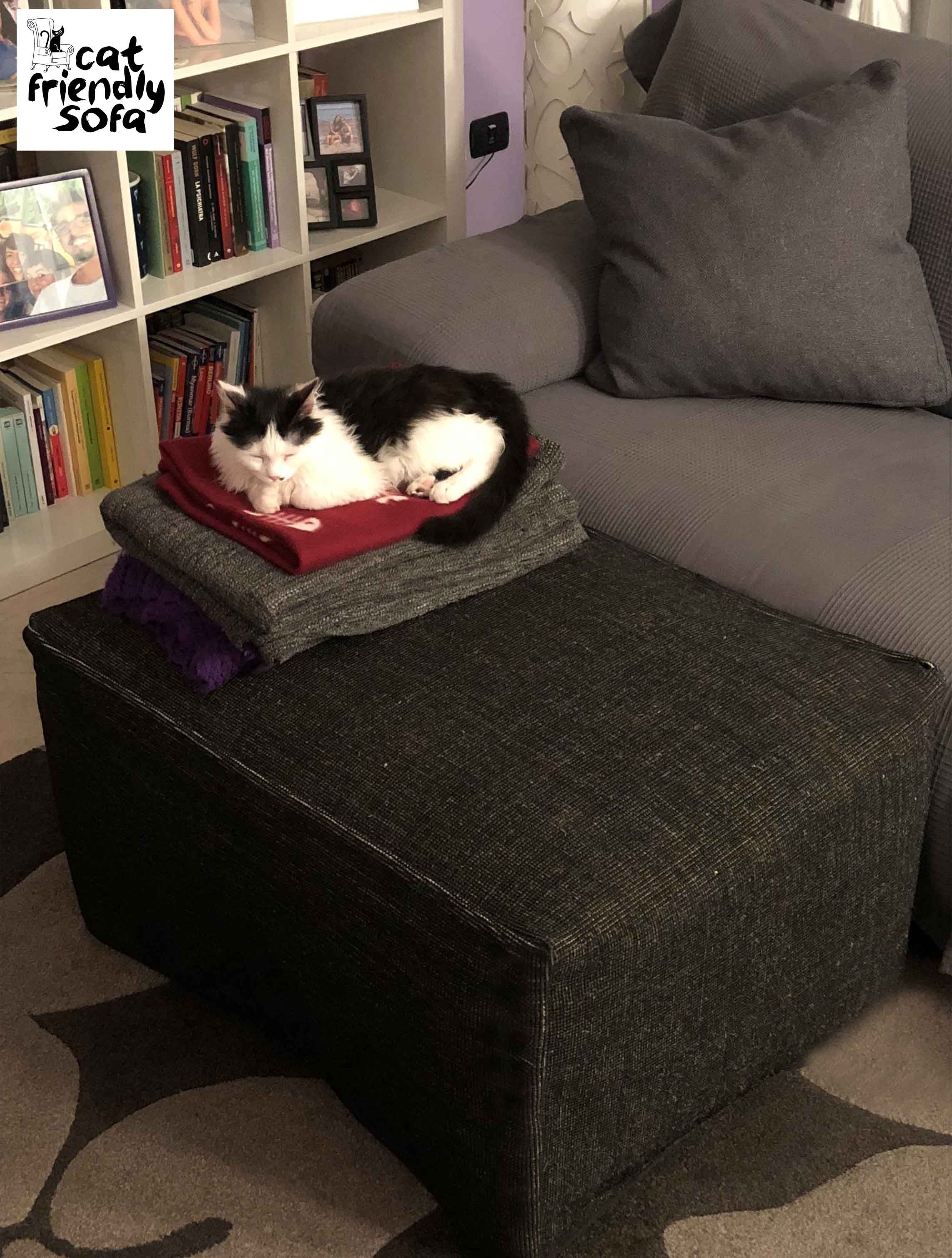 Cat Takes A Nap On An Ottoman Protected With Resistant Fabric Friendly Sofa
