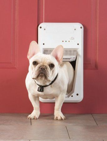 Petsafe Smart Door Electronic Pet Access Dog Door Small Our Home