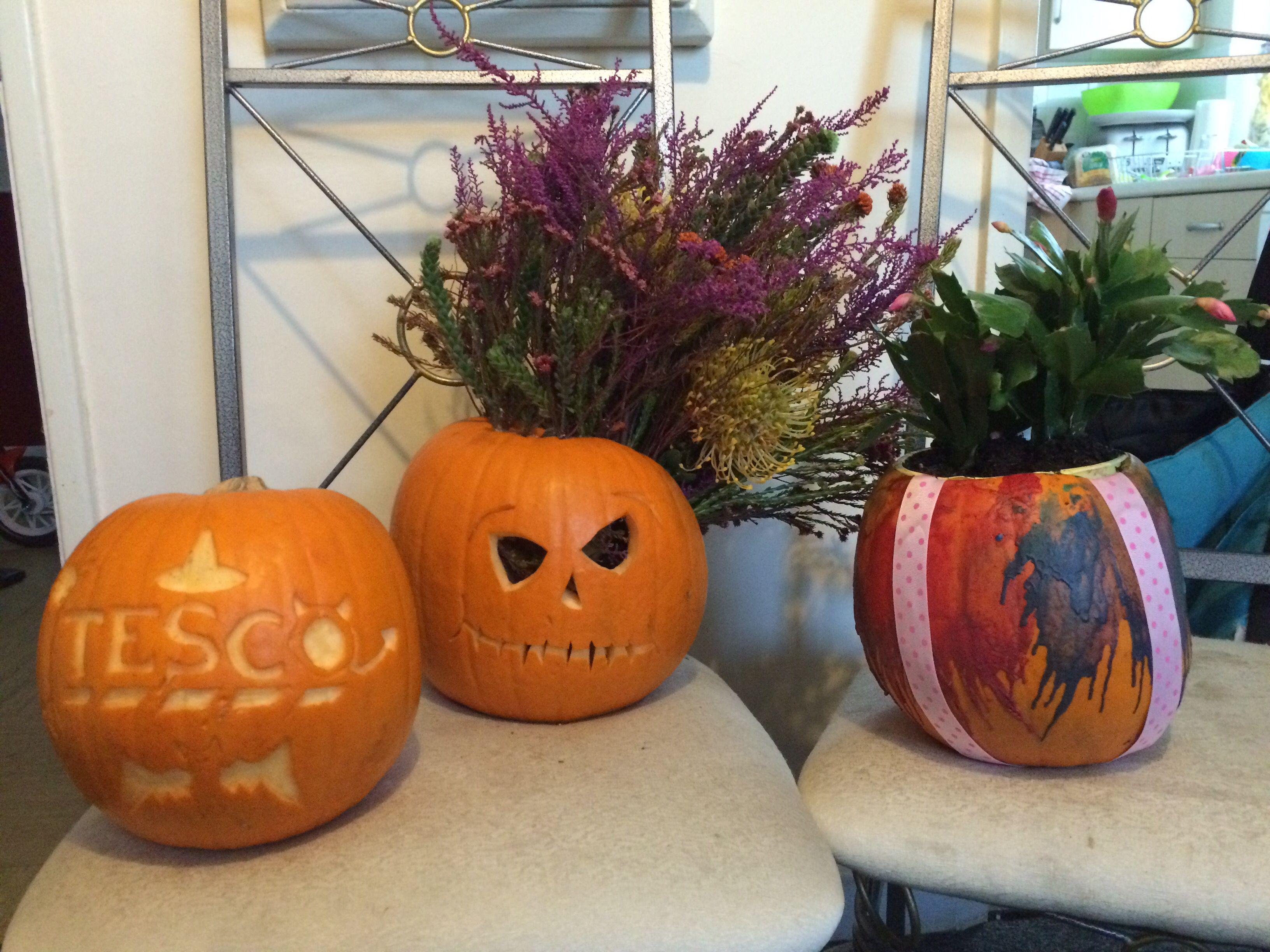 halloween pumpkin carving ideas flower pumpkin planters crayon and