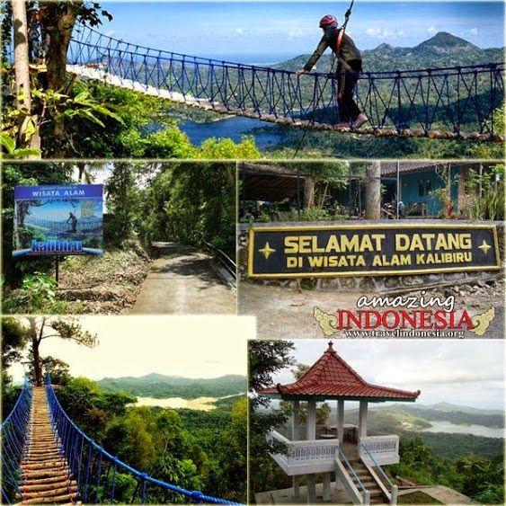 Menikmati Kesejukan Dan Pemandangan Alam Di Hutan Wisata Kalibiru Yogyakarta Dengan Gambar Pemandangan Alam Hutan