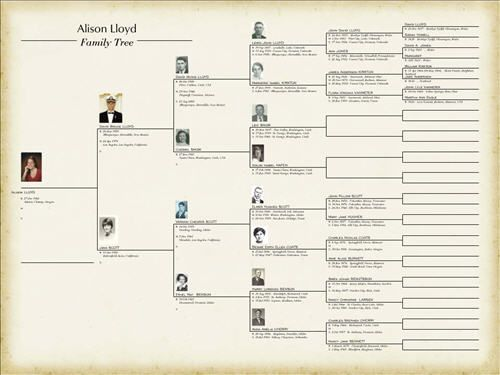 Free Blank Family Tree Chart Geneology Pinterest Family tree - blank divorce decree