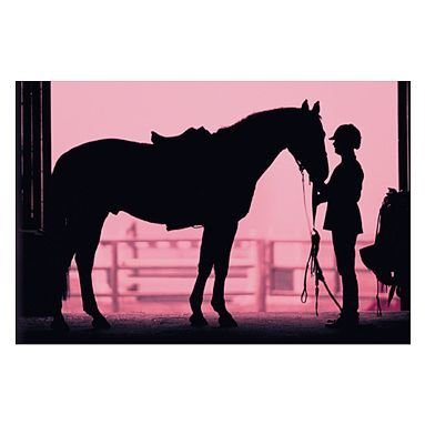 I love the Equestrian Wall Mural on pbteen.com