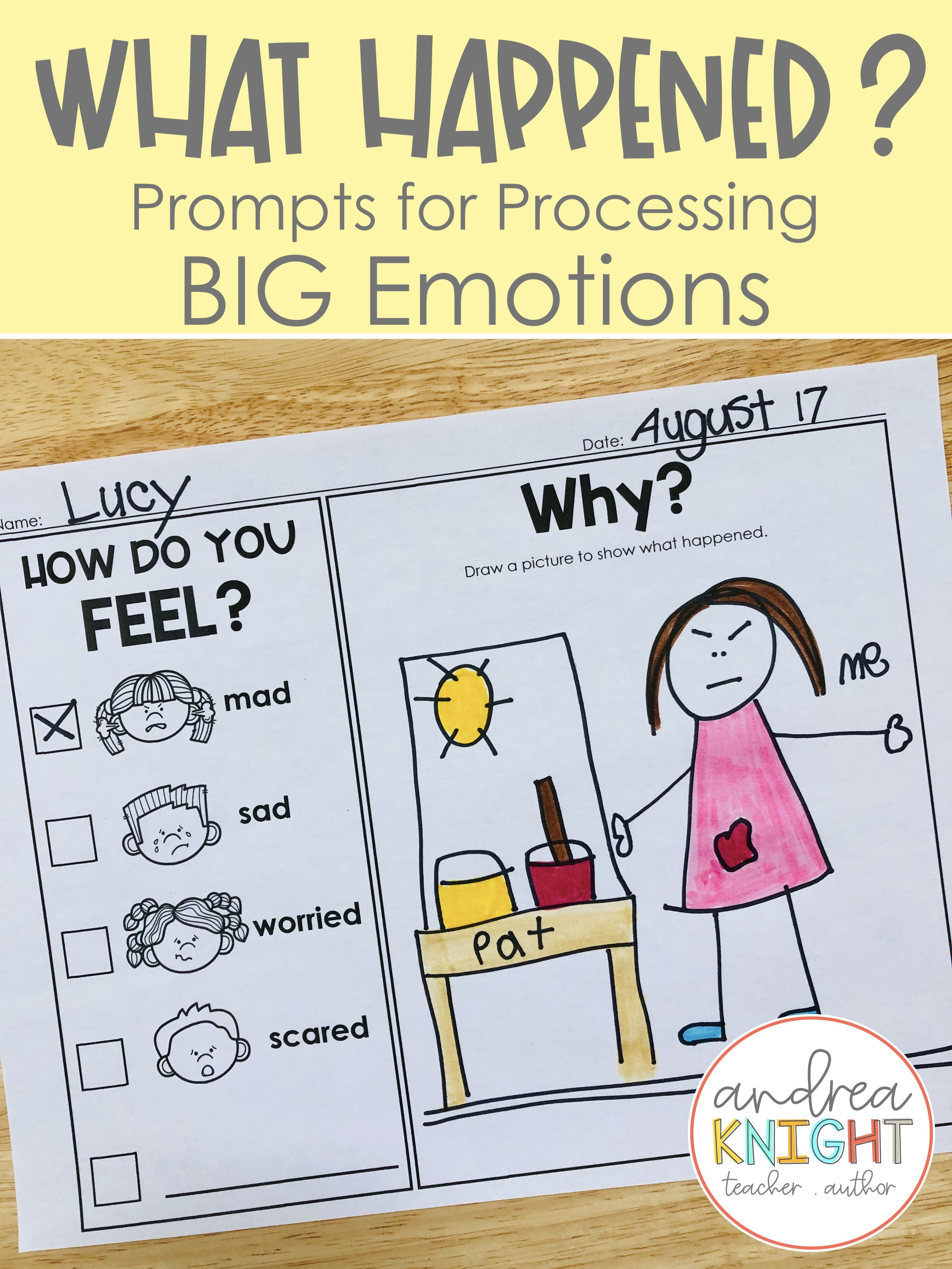 Social Emotional Processing Tools In