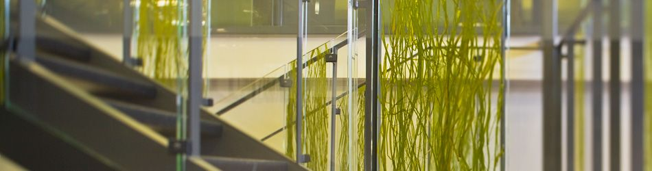 pressed glass in stairway | Stairways to heaven! | Pinterest | Grasses,  Stairways and Glasses