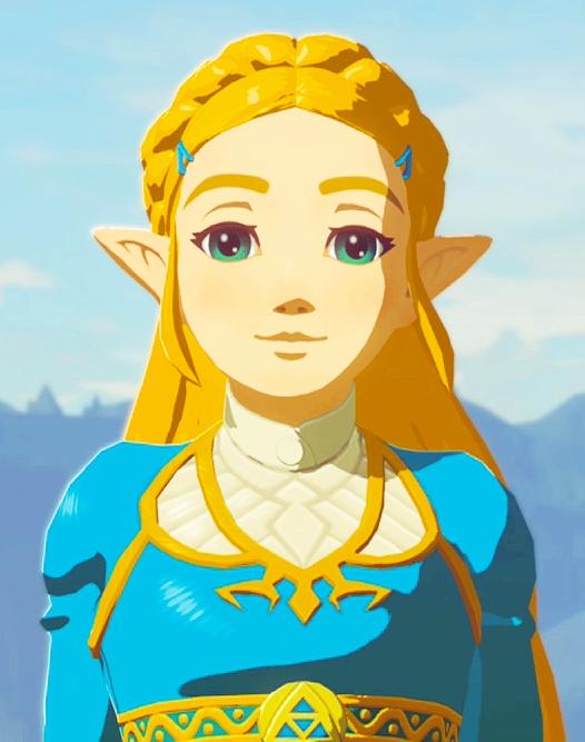 Hyrule Warrior Princess Zelda Photo Hyrule Warriors Zelda Hyrule Warriors Legend Of Zelda