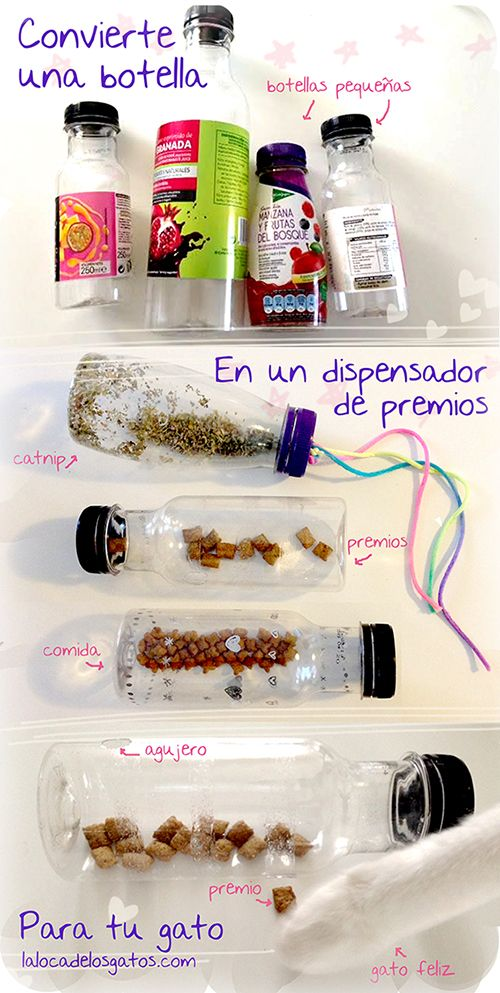 Free Diy Cat Toy From Old Plastic Bottle Shelter Pet