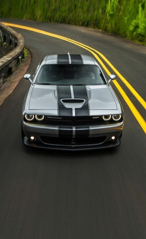 Either You Sit On The Pile Of Cash Or You Continue To Grow Dodge Challenger Dodge Challenger Dodge Challenger Srt Cars