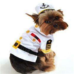 Dog Halloween Costumes Celebrate The Season Dog Halloween