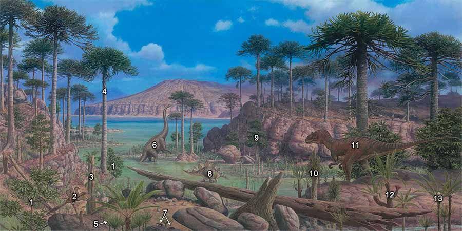 счет картинки растений триасового периода замены