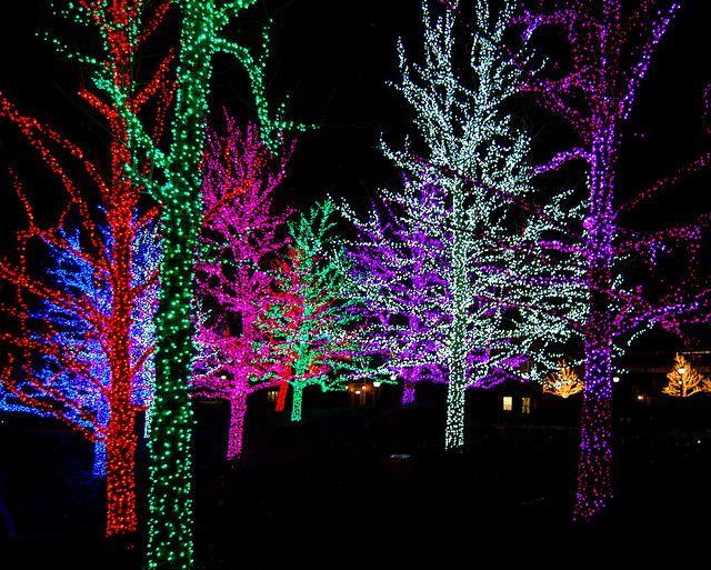 Untitled Rainbows Christmas Christmas Lights Outdoor Christmas Decorations