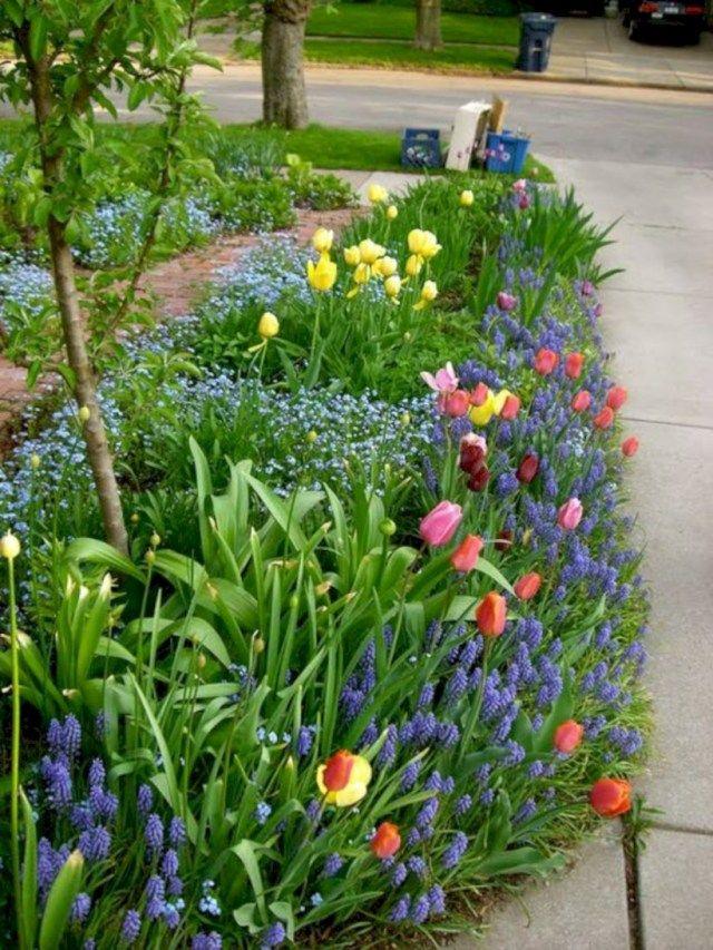 Cool 15 Spring Bulb Garden To Soothe Your Soul Bulbs Garden Design Small Flower Gardens Spring Bulbs Garden
