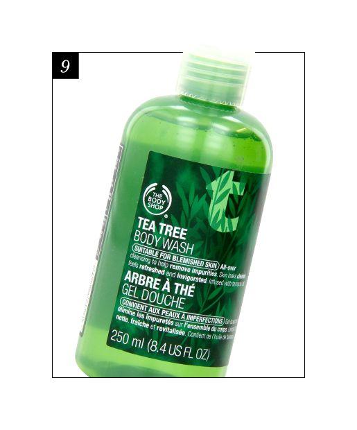 17 Best Body Washes Body Wash Tea Tree Body Wash Body Shop Tea Tree