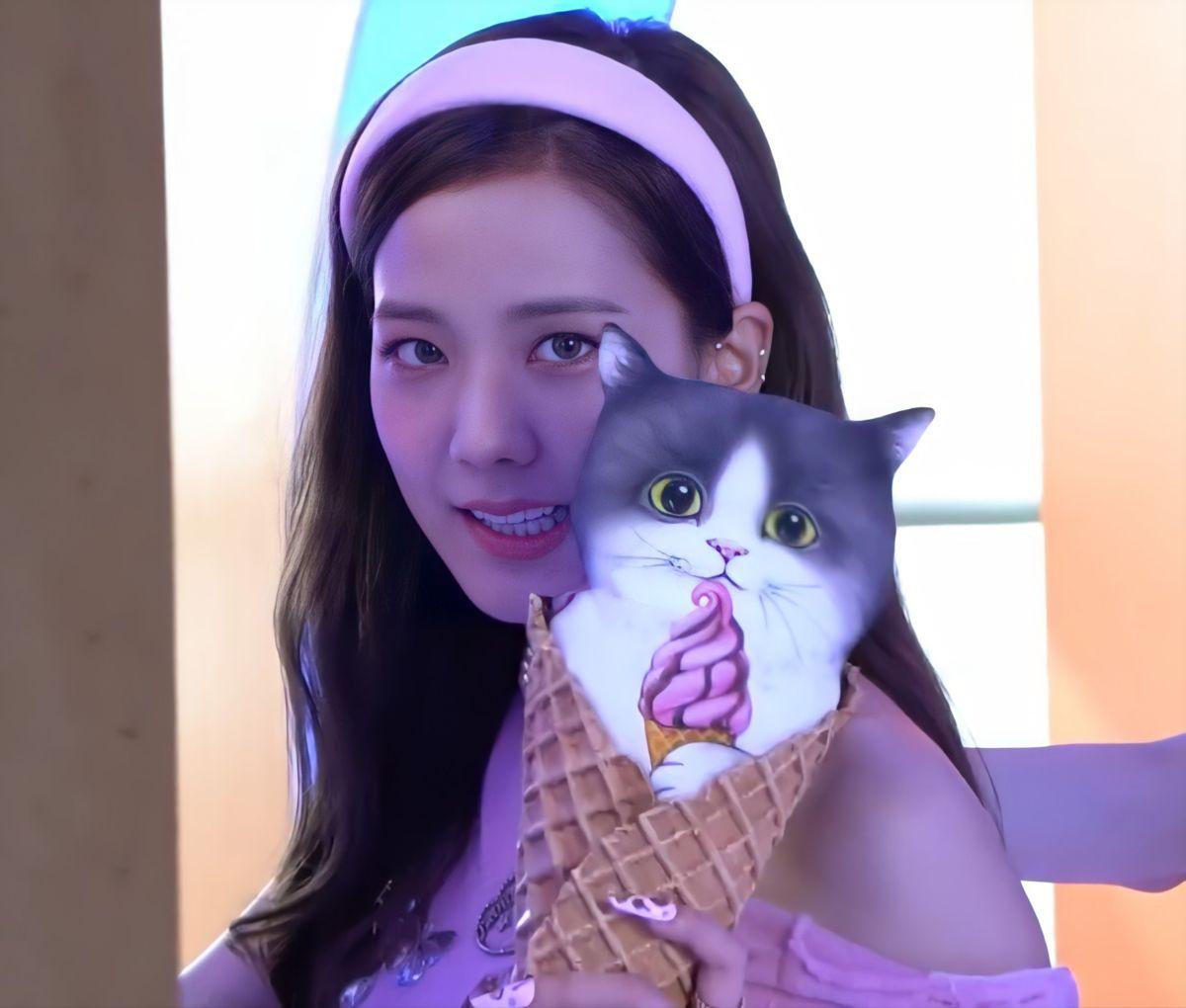 جيسو Jisoo Cat Ears Zelda Characters Character
