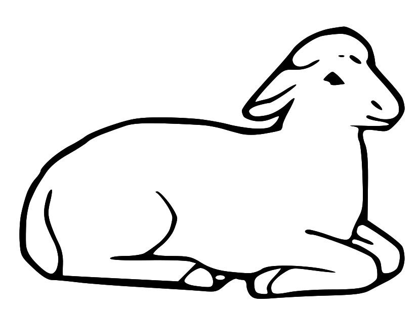 lamb laying down Colouring Pages
