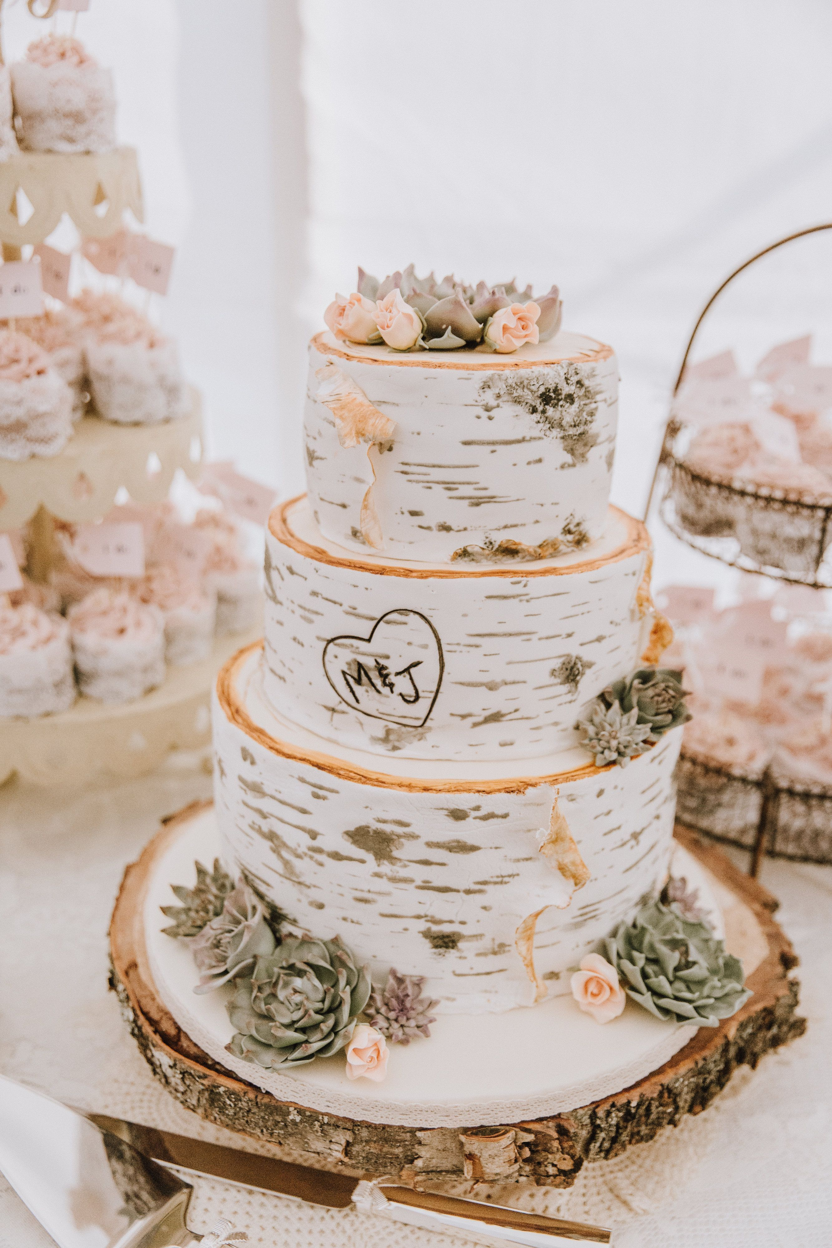 Birch Bark Wedding Cake With Fondant Succulents And Roses Made By