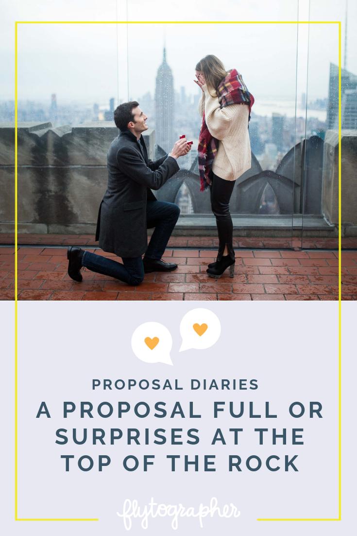 the proposal plot summary