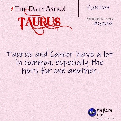 Dating A Cancer Taurus Woman Man