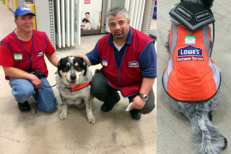 Lowe's Hires Man And His Service Dog, Gives Them Matching