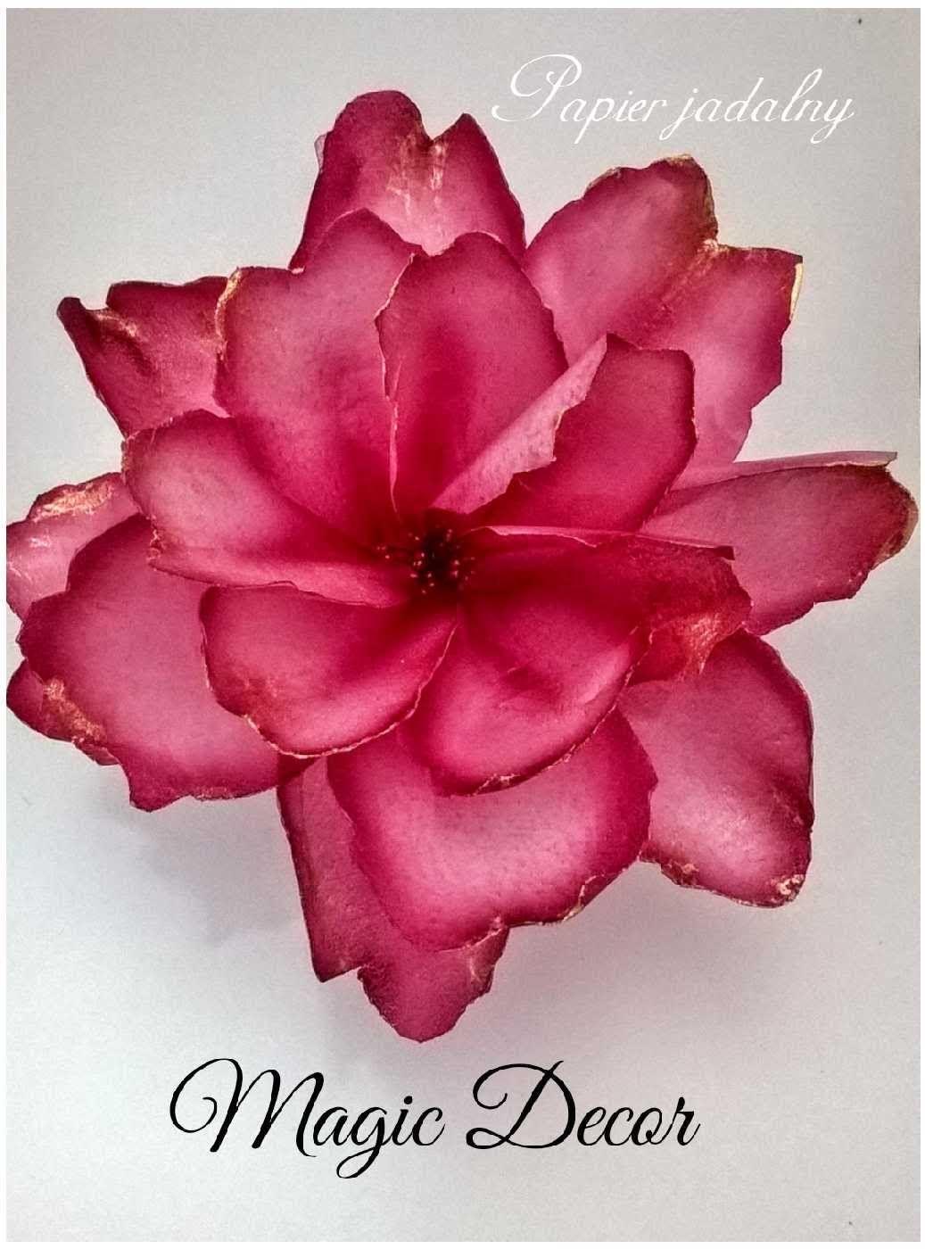 Kwiat Duzy Rozeta Lotus Flower Tattoo Flower Tattoo Floral