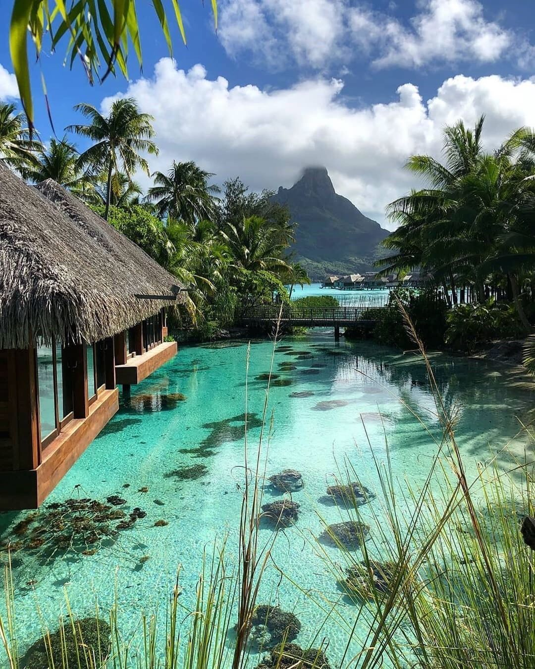 Gorgeous View Of Bora Bora Credi Beautiful Places To Travel Vacation Places Dream Vacations