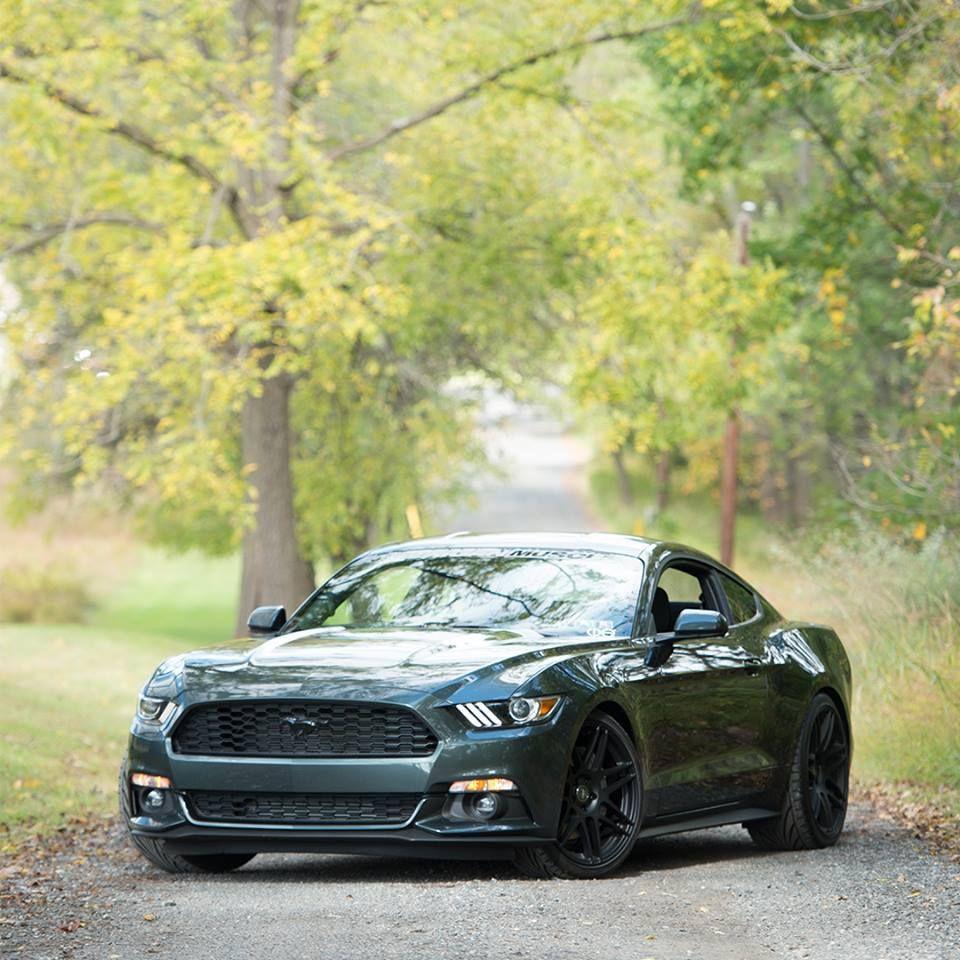 GUARD 2015 Mustang (S550) Thread