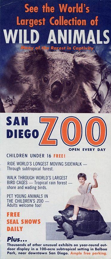 1960s San Diego Zoo Flyer Front San Diego Zoo San Diego Zoo Safari Park San Diego