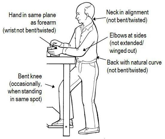 Ergonomic Guide For Standing Workbench Google Search Workbench
