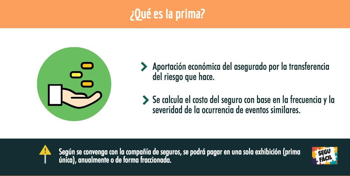 Que Es La Prima Insurance Seguros Premium