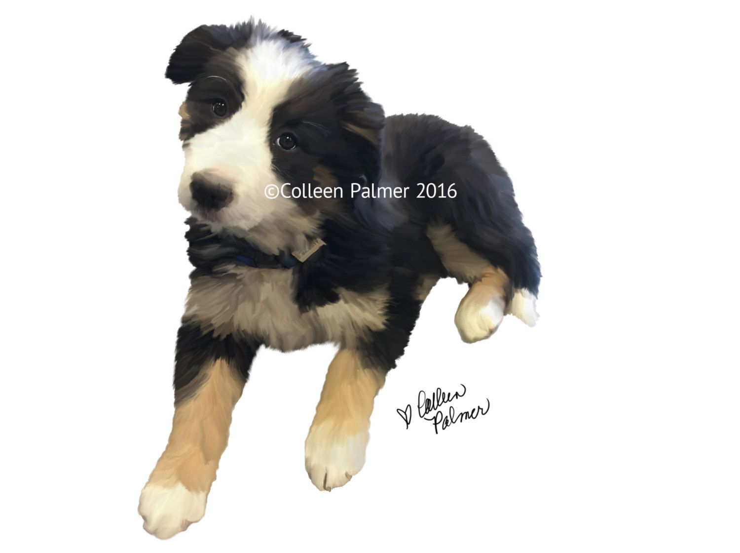 Tri Color Collie Puppy Print Miss Sydney Of Malta By