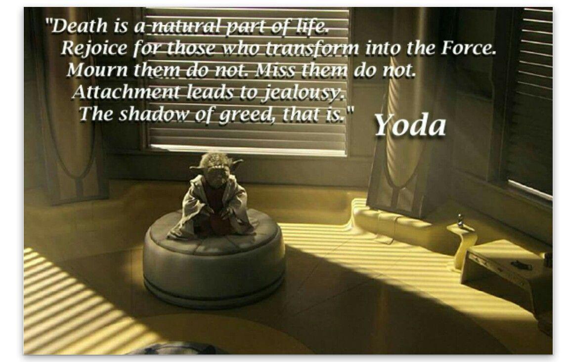 Pin By Joyce Hermosillo On Quotesjokespics Yoda Quotes Star