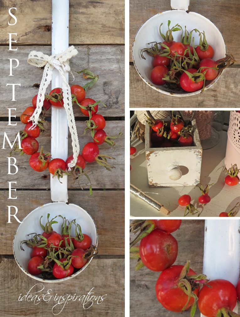 rose hip, Hagebutte, wreath, Kranz, rot, red, decoration