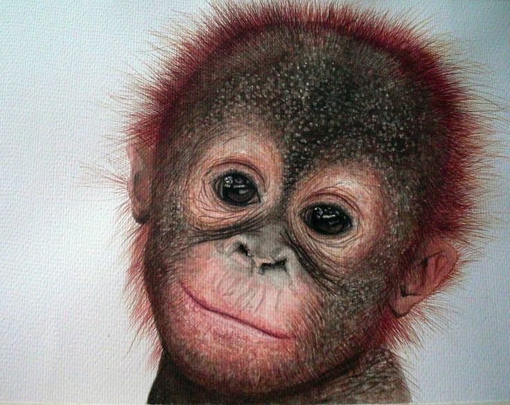 tierbabys süß lustig | Orang-utan watercolour painting Painted by judy dickinson